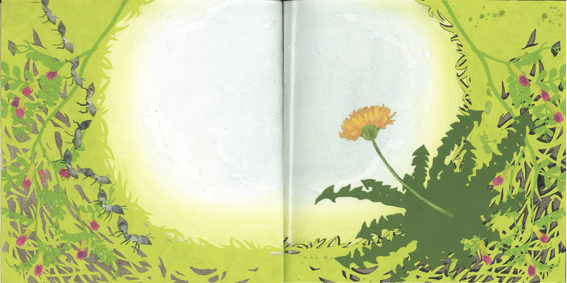 Yasuda Sayaka, The Story of a lonely Dandelion